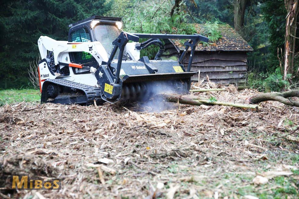 kácení náletových dřevin Bobcat forestry cutter