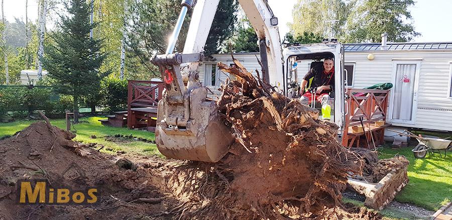odstraňování kořenů