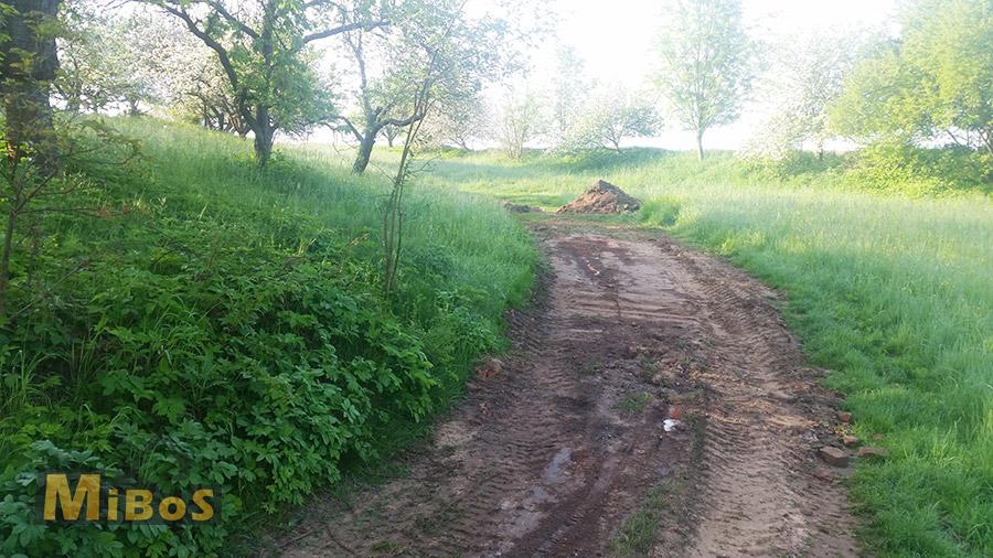 úprava a rovnání terénu